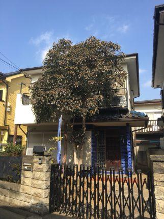 国分寺市西恋ヶ窪の解体工事を行いました。